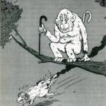 Egy bölcs öreg majom