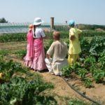 Kertészet haladóknak
