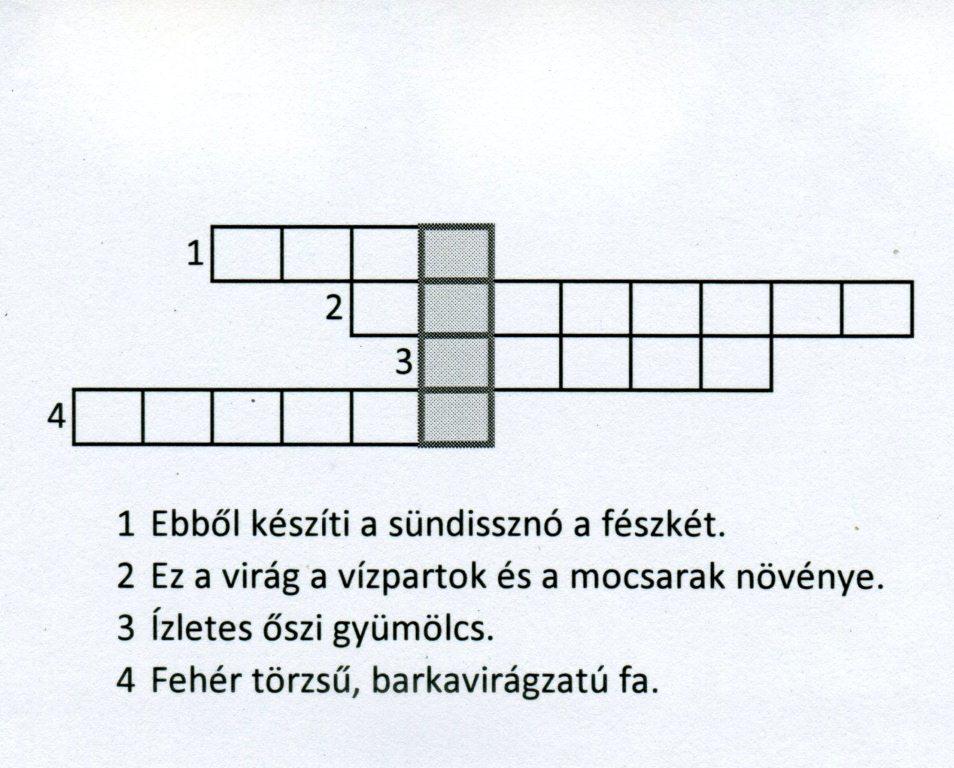 Öko rejtvény 2.