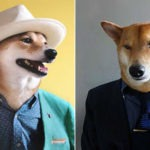 A fiú és a kutyája