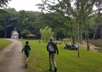 Gyertyános völgyi parkerdő
